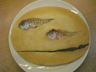 小魚.jpg