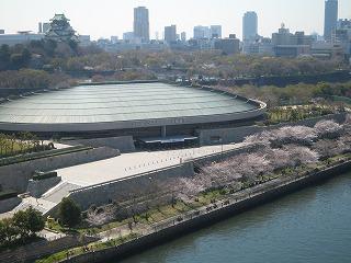 4.7桜と大阪城.jpg